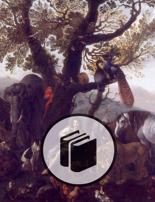 Catalogo mostra Sinibaldo Scorza a Palazzo della Meridiana_535x696