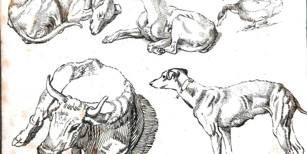 Sinibaldo Scorza: Animali. Matita nera, penna e inchiostro bruno, 177 x 239 mm. Collezione privata