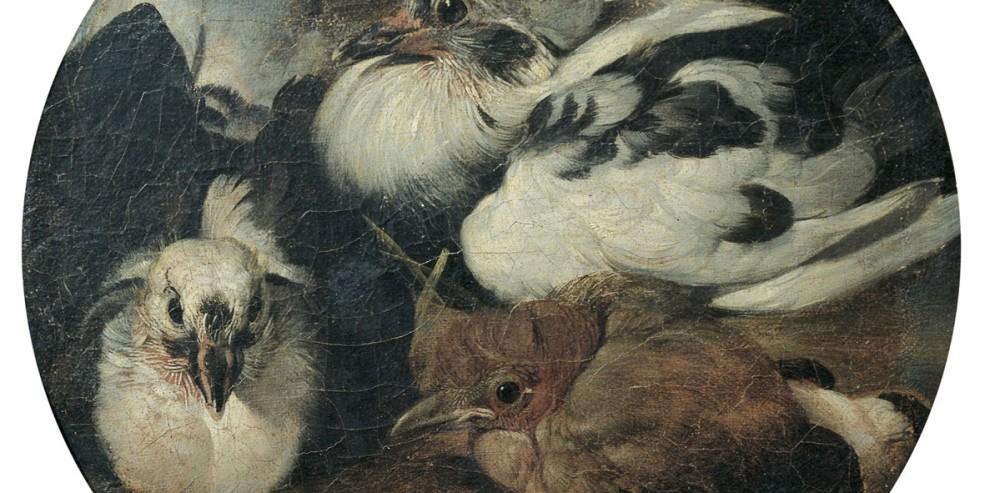 Sinibaldo Scorza: Due piccioni con un tordo. Olio su tela applicata su tavola, 21 cm diam. Genova, Musei di Strada Nuova. © Musei di Strada Nuova, Genova